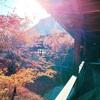京都本山での勉強会に参加した