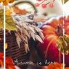食欲の秋復活