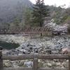 広島県福山市 山野峡キャンプ場で無料キャンプ!~シーズン営業中ではなかったけれど、泊まれた!~