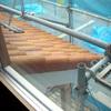 2階からの景観