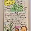 草なのか、トウモロコシなのか、草なのか・・・