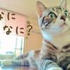 田口久人さんの名言が気になる!!悩んだ時に心に染みる言葉の数々