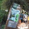 【SFC修行】シドニー編③:まるでテーマパーク!広すぎるタロンガ動物園