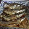 幸運な病のレシピ( 2054 )朝:イワシの焼きびたし、鱒、カツの仕立直し、味噌汁、マユのご飯