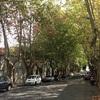 ウルグアイ  -世界遺産の街「コロニア・デル・サクラメント」