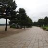 【今日のくーちゃん】横浜市金沢区・海の公園でお散歩!くーちゃん、初めての海に大はしゃぎ♪