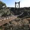 ほしだ園地で秋のお散歩。星のブランコ(吊り橋)は想像以上に高っ!