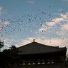 03/11:惡夢のごとき日本の歴史「昨日は大空襲、今日は大地震