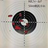 新しい銃と射撃練習(´・ω・`)