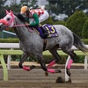 【レース回顧】フジノウェーブ記念〜地方古馬短距離界を占う1戦〜