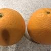 【juice cleanse】果物の農薬除去方法