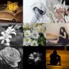 アメブロ、Instagram、Facebookに 作家「ムカデの民」さんの詩をご紹介いたします。