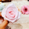 【ワークショップ♪】バラの開花作業中の様子✨