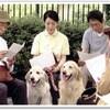 TV/「ディロン~運命の犬ふたたび」放送
