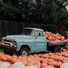 アメリカらしい秋の写真撮影
