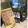 【夏の奈良】徒歩で巡る東大寺・鹿鳴園・猿沢池・平宗