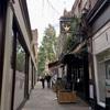 ロンドンの児童書専門店:The Alligator's Mouth