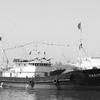 北朝鮮海域で活動する中国漁船の謎…中国黒社会と北朝鮮軍、金正恩との関係