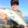 沼津周辺最新カゴ釣り情報