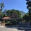 台湾人と行く夏休み台湾旅行#1   南投惠蓀林場