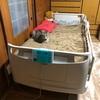 母の介護用ベッドを2モーターから3モーターに交換した ~介護用品のリースをお得に使っていますか?~