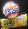 日本のアイスの値段。