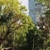 『天王寺動物園』で愛嬌のあるしろくまに会いに行ってみた in大阪