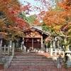 竹中稲荷神社の紅葉、見頃や現在の状況。