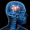 「褒めること」で回復が早まる脳の働きとは?