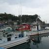 真鶴港で散歩!クルージング!そして港ランチ