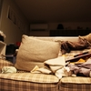ズボラ主婦も実践できた家事効率化のアイデア4選!簡単な整理整頓術!