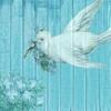 3/8✨今日のサクッと占い✨ほんとうの星空で星占い✨渡邊りりか