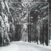 雪景色と感性の話。