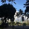 ハワイの台風15号被害