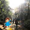 六義園で秋のお散歩。300円で東京プチ旅行気分に