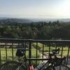 ロードバイクで里山ライドを楽しんできました。