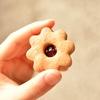 冷やして食べても美味しい焼き菓子 リンツァークッキー