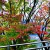 2020.12.5亀山湖