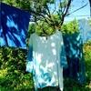【追加募集】8/30 藍染の会