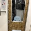 大阪メトロ堺筋線の66系リニューアル車両の乗務員室扉やドア部の柄がヒョウ柄な理由は?