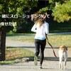 ただ歩くのはもったいない!犬の散歩がてらのスロージョギングで10kg以上痩せた話。効果、やり方は?