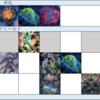 【遊戯王】DDD展開考察 #329(必要札:コペル、スワラル、ネクロ)