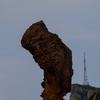 折れてしまう前に見ておきたい…女王頭で有名な野柳地質公園へ行ってみた!