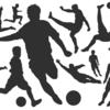 アフリカネイションズカップ2017 決勝