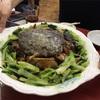 錦町 マリンハイツの「百鶴楼」でスッポンの香味醤油蒸など