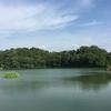 梅雨明け間近の橿原神宮と深田池、箸墓古墳と箸中大池。そして、卑弥呼と「ひめみこ」。