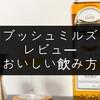 「ブッシュミルズ」のレビューと美味しい飲み方【気軽さが魅力】