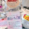 宮崎県 高鍋町の「自家製アイスもなかセット」は美味しかった!