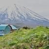 北海道らしい風景の散歩道。必見よ。