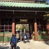 鎌倉女子散歩の一日♡高徳院の大仏&鎌倉小町通り編